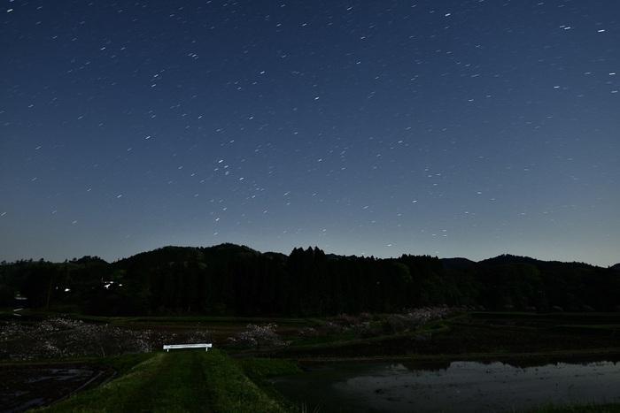 水引の静夜